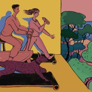 sport-doma